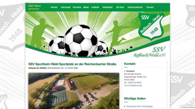 webdesign-sportverein-website-erstellen-wordpress-homepage